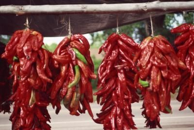 dry-chili-peppers-kardia-karkinow-elkos