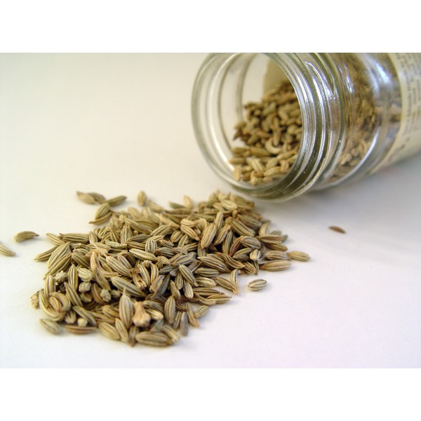 seed-sweet-fennel