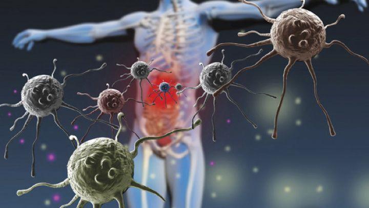 ΤΟ ΜΙΚΡΟΒΙΩΜΑ ΤΟΥ ΕΝΤΕΡΟΥ | Bioathens